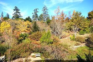 Image of Quarryhill Botanical Garden: http://dbpedia.org/resource/Quarryhill_Botanical_Garden