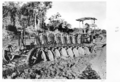 Queensland State Archives 4456 Wandoan Lands Majestic plough 1952.png