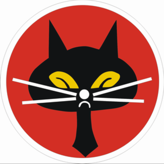 Black Cat Squadron - Black Cat Squadron official emblem