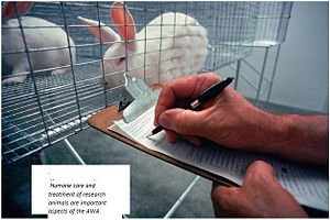 Animal Welfare Act of 1966 - Humane care and treatment of research animals are important aspects of the AWA.