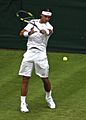 Rafa Nadal Forehand Wimbledon.jpg