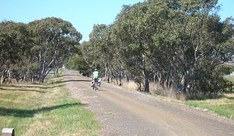 Leopold, Victoria - The Bellarine Rail Trail as it approaches Leopold from the west.