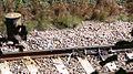 Rail track lubricator.jpg