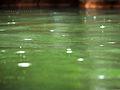 Rainy (10568095834).jpg