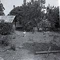 Ray farm 1940s Ashland Alabama 012.jpg