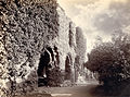 Reading Abbey, The east walk of the Cloister, 1890-1899.jpg