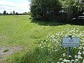 Recreration ground at Ty Gwyn Lane, Wrexham (2).JPG