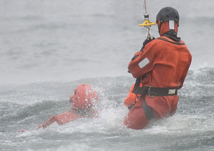Danish navy rescue swimmers from a danish insp...