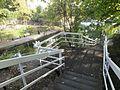 Regent's Canal, Islington 3376.JPG