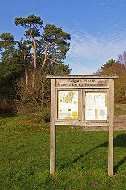 Reigate Heath noticeboard - geograph.org.uk - 632937