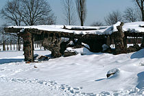 Remains of Crematorium II Birkenau.jpg