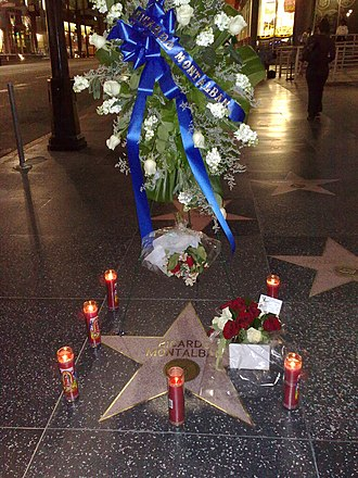Ricardo Montalbán - Ricardo Montalbán Hollywood Walk of Fame Star shortly after his death