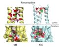 Rimantadine S31N Mutation Binding.png