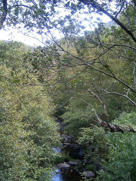 Imagem:Rio Sabor - Parque Natural de Montezinho.jpg