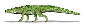 Riojasuchus - Restoration