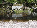 River Allen at Allen Banks - geograph.org.uk - 1535680.jpg