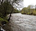 River Wear below Bollihope Burn confluence - geograph.org.uk - 1573673.jpg