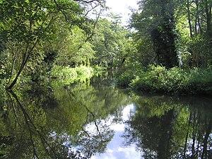 Moor Park, Farnham - The River Wey in Moor Park Nature Reserve