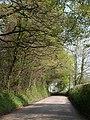 Road east of High Gate - geograph.org.uk - 2404609.jpg