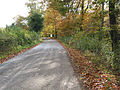 Road to Oxenhall from Kempley - geograph.org.uk - 607709.jpg