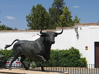 Ronda Bull.jpg