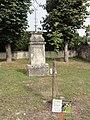 Ronvaux (Meuse) jeune cormier, arbre d'avenir pour les communesl.JPG