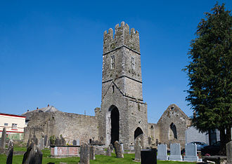 Roscrea - Remains of the 15th-century Franciscan Friary