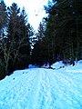 Route enneigée (4).jpg