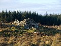 Ruins east of Craignarget Hill - geograph.org.uk - 1107002.jpg