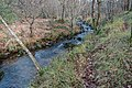 Ruisseau des Palanges (19).jpg