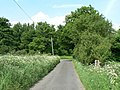 Rural Lane - geograph.org.uk - 818462.jpg