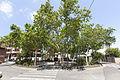 Rutes Històriques a Horta-Guinardó-plac╠ºacatalana01.jpg