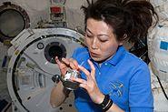 STS131 Naoko Yamazaki Apr14