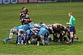 ST vs Treviso 2013 (64).JPG