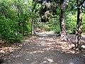 Sacro Monte Ghiffa Veduta Parco.JPG