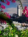 San Francisco - Coit Tower from Lombard Street (971229757).jpg