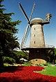 "San Francisco - Golden Gate Park 'Windmill"" (1106540473).jpg"