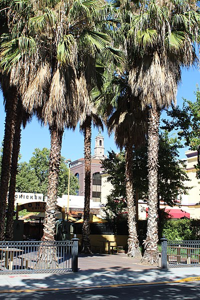 File:San Jose, CA USA - panoramio (8).jpg