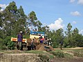 Sand Harvesting-Tala, Kenya 2.jpg