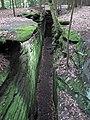 Sandstone (Sharon Formation, Lower Pennsylvanian; Virginia Kendall Ledges, Ohio, USA) 3 (44410101675).jpg