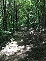 Sandstone Canyon Trail Don Robinson State Park 7.jpg