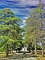 Santuário de Nossa Senhora do Incenso - Penamacor - Portugal (11685556574).jpg