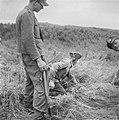 Serie Landmijnen ruimen in Hoek van Holland, Bestanddeelnr 900-6462.jpg