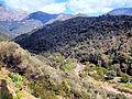 Serriera vallée du Santa-Maria.jpg