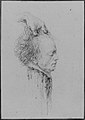 Severed head, said to be that of Maximilien-François-Marie-Isidore de Robespierre (1758-1794), guillotined July 28, 1794 (10 Thermidor, An II) MET 264947 62.119.8B.jpg