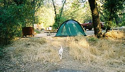Shasta Lake Campground.JPG