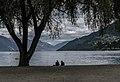 Shore of the Lake Wakatipu in Queenstown 04.jpg