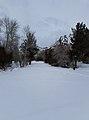 Shoshone National Forest - January 2017.jpg