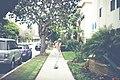 Shoutout to the Sidewalk (Unsplash).jpg