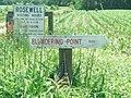Sign at Rosewell Ruins, May, 2013 - 3.JPG